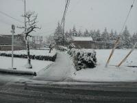 雪店3.jpg